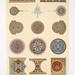 Arabesques - fragments d'ornementation d'un Qoran du tombeau de soultan el-Ghoury (XVIe. siècle) b