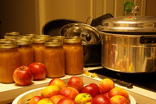Canning Applesauce | by mill56