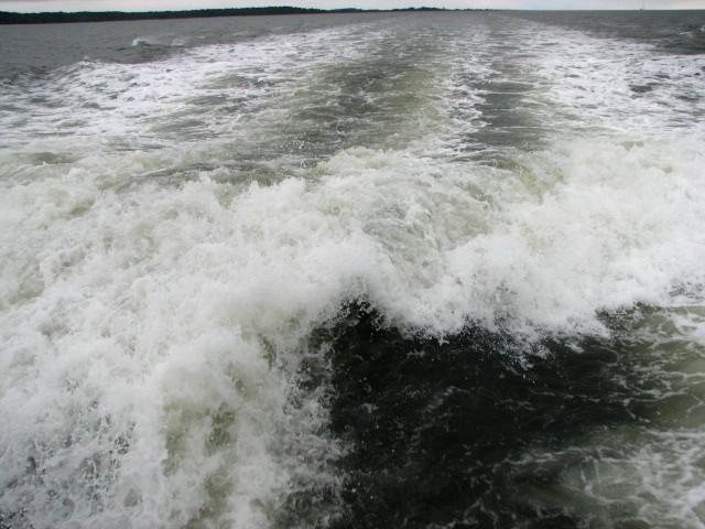 Sapelo Island Ferry Schedule Fee