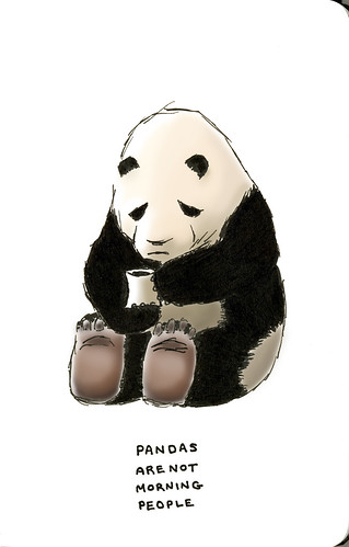pandas are not morning people | by sween