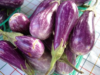 Baby Eggplants | by swampkitty