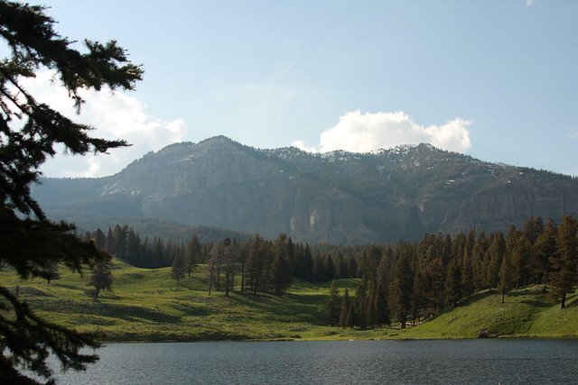Montana June 208 121
