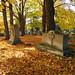 Oakwood Cemetery - Troy, NY - 07