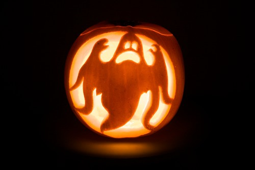 Pumpkin Ghost Flickr Photo Sharing