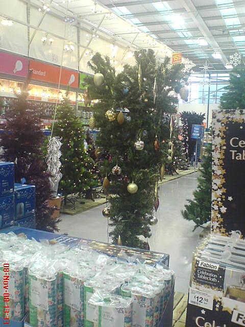 Upside down Christmas tree in B&Q   Bizarre!   Anna Blight   Flickr
