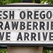 Oregon is so proud of local strawberries