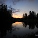 Armstrong Redwoods - Bull Frog Pond Sunset