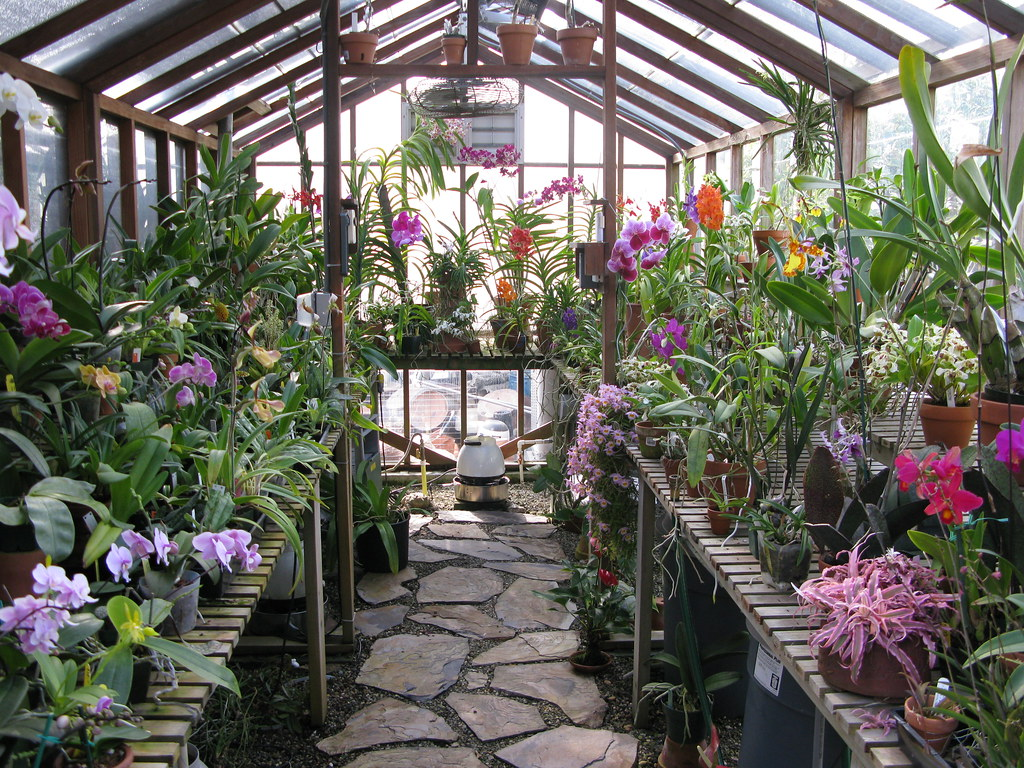 My Greenhouse 2 Overview April 2008 Orchid Dude Flickr