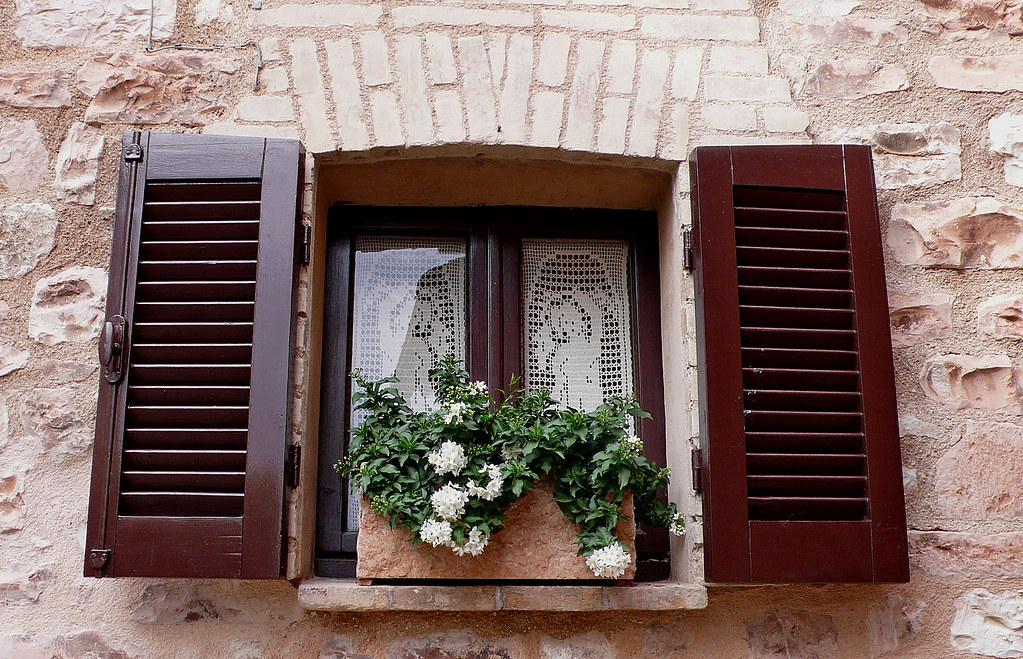 Finestra con fiori bianchi window with white flowers for Finestra con fiori disegno