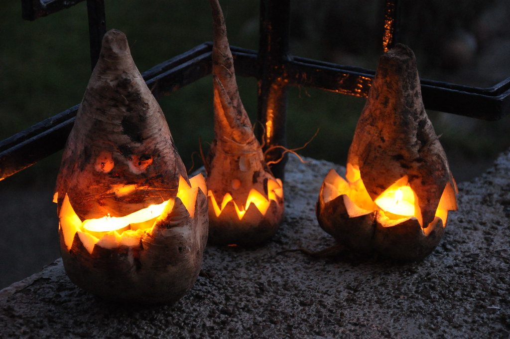 Sugar Beet Halloween Lanterns Niklas Morberg Flickr
