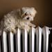 keeping warm...