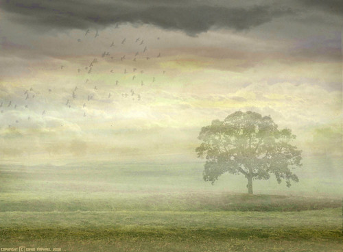 Genesis - Wind & Wuthering album cover re-creation | Flickr - Photo ...: https://www.flickr.com/photos/24792080@N05/2404633163