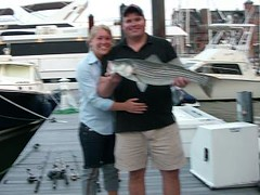 nice striper | by ninelives82000