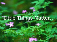 Little Things Matter | by Melody Campbell