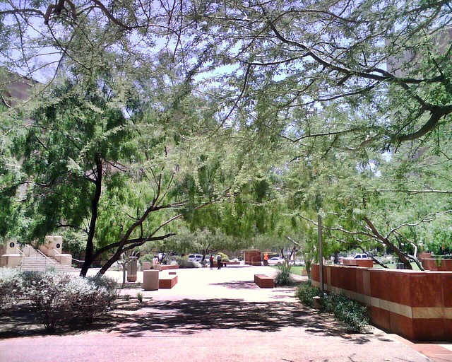 Beautiful plaza in God's oven, Phoenix