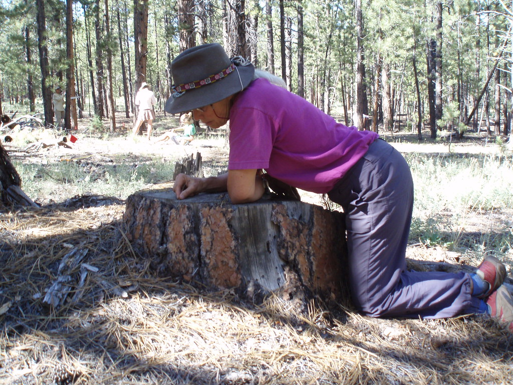Counting Rings On A Tree Stump