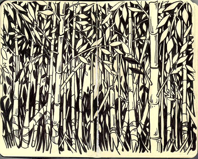 Bamboo Forest |