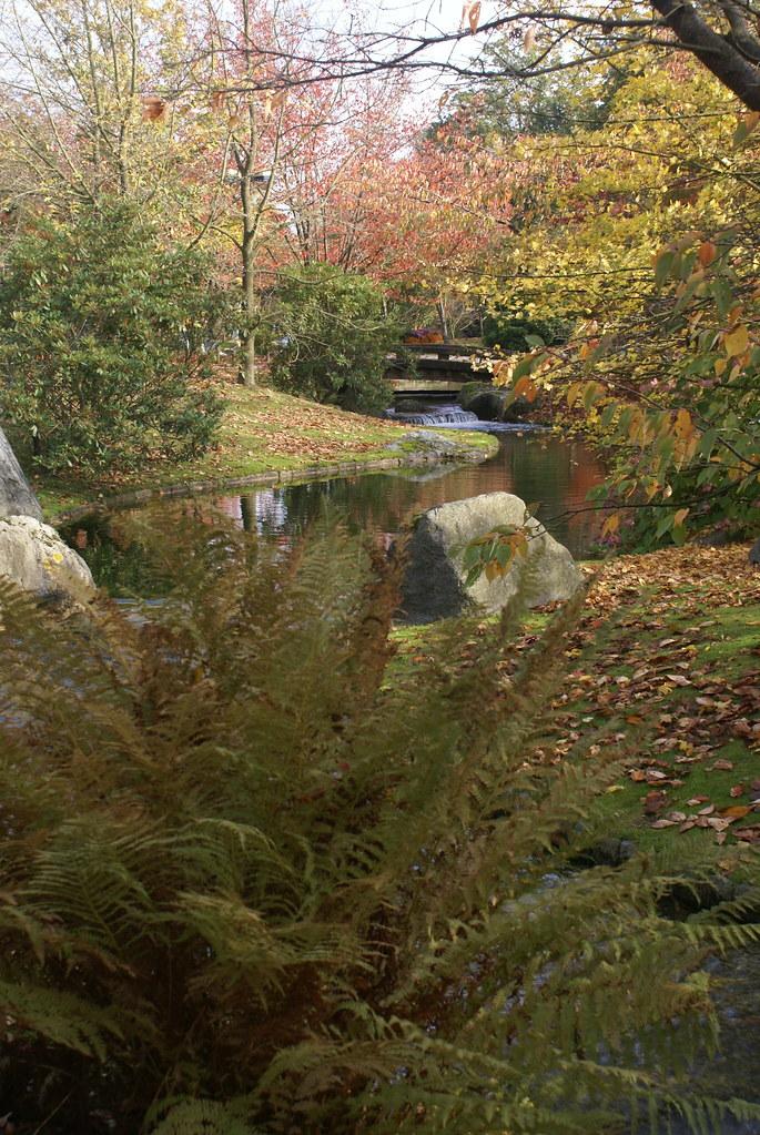 Hasselt, Jardin Japonais - Hasselt, Japanese Garden
