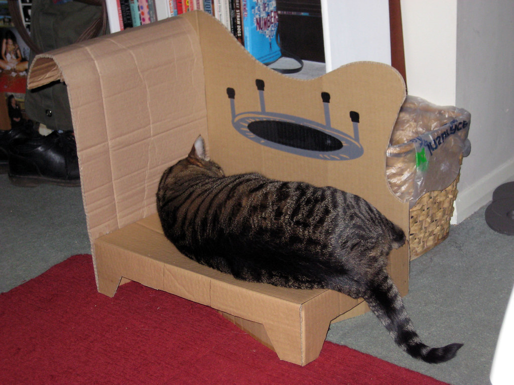 Sturdy enough for ripley cat chaise lounge project from for Cat chaise lounge
