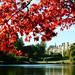 Autumn at Sheffield Park Garden in Sussex