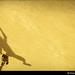 Skatiando Abstrato   Abstract skater
