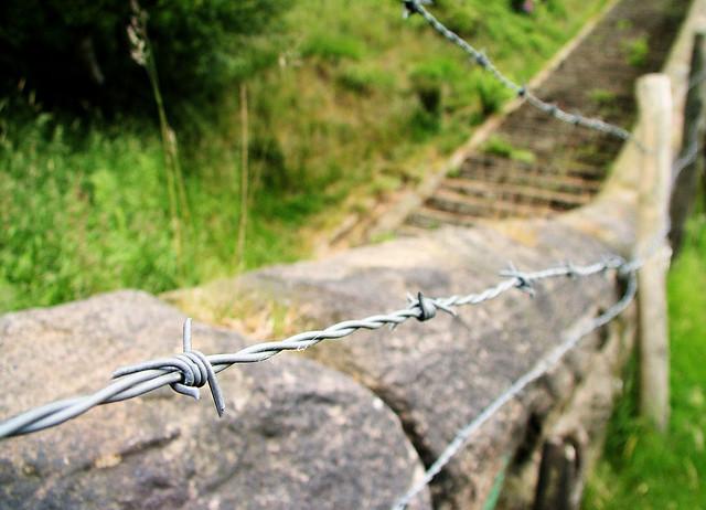 Diy Barbed Wire Crafts