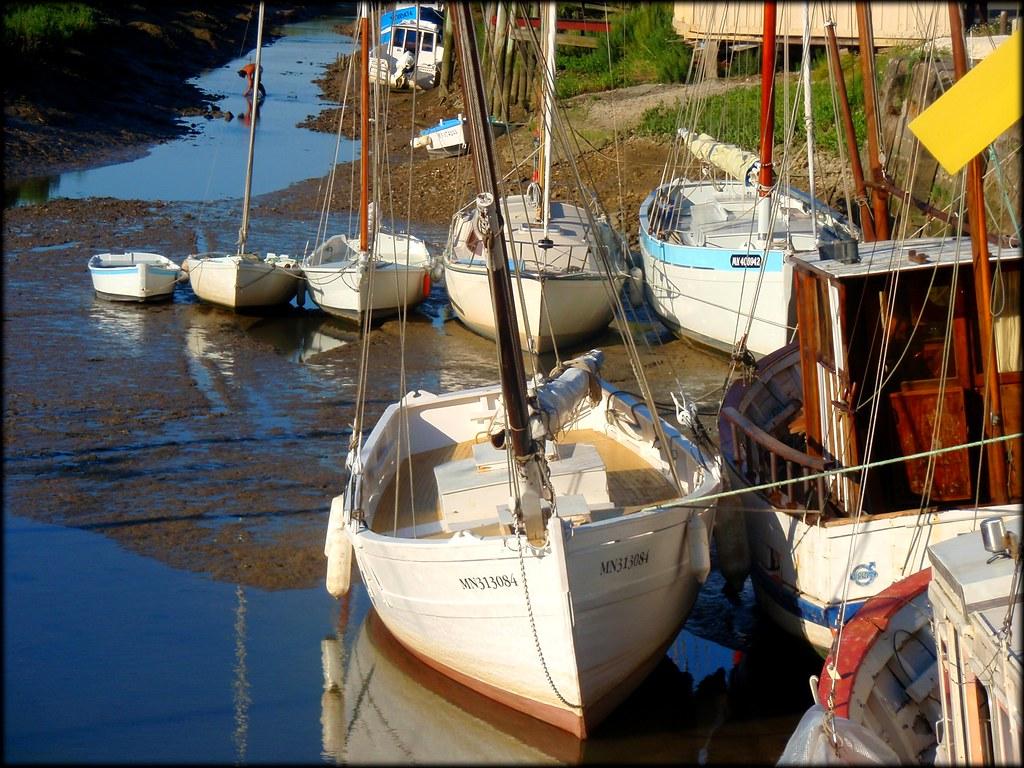 Mornac Sur Mornac Sur Seudre 17 France
