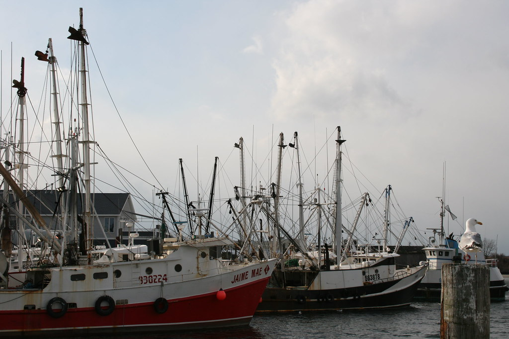 Commercial fishing boats jersey shore point pleasant for Nj shore fishing report