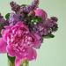 Peonies + Lilacs