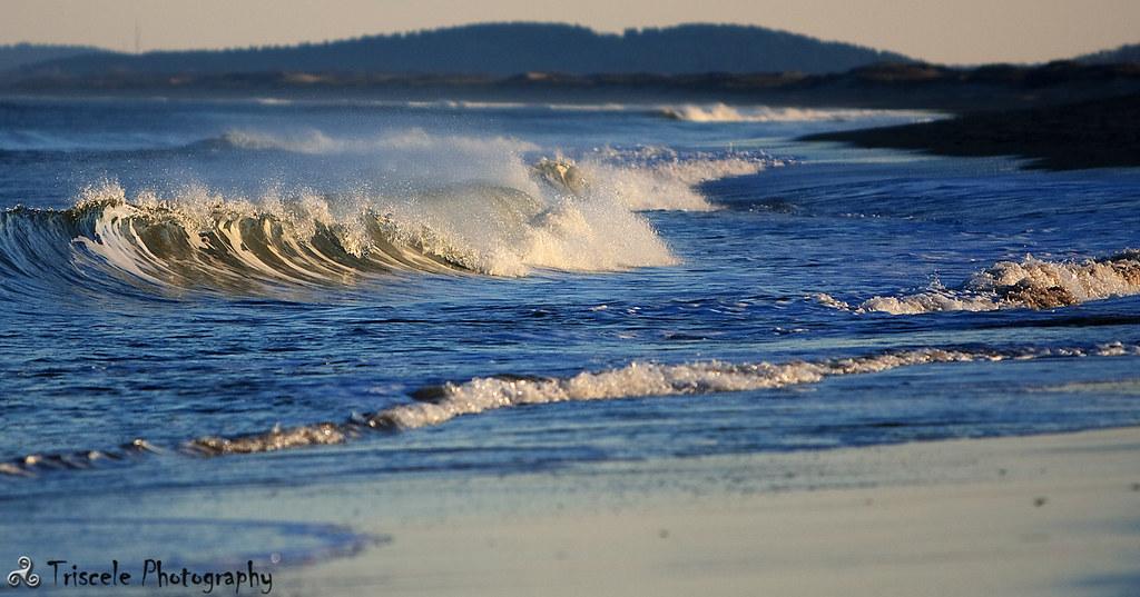 The Beach Plum Island Beach