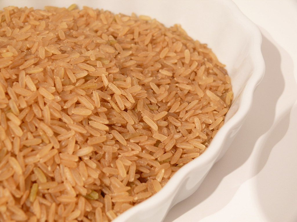 Brown Rice In Dog Food Good Or Bad