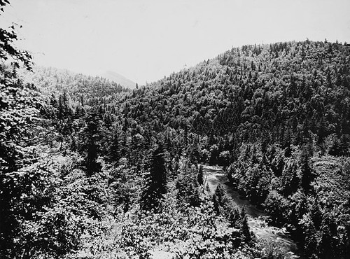PhC8_178 | by State Archives of North Carolina