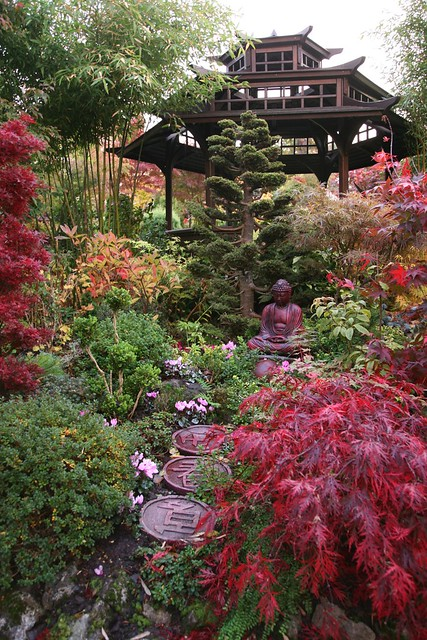 Autumn in the pagoda garden at dawn october 25 english for Gardening 4 all seasons