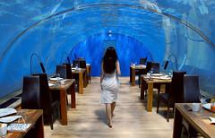 The Indian Ocean: 15 feet below