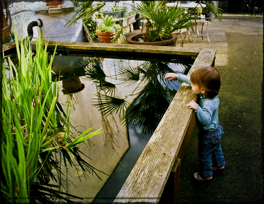 Go fish film looking for the fish at happy rock cafe for Go fish film