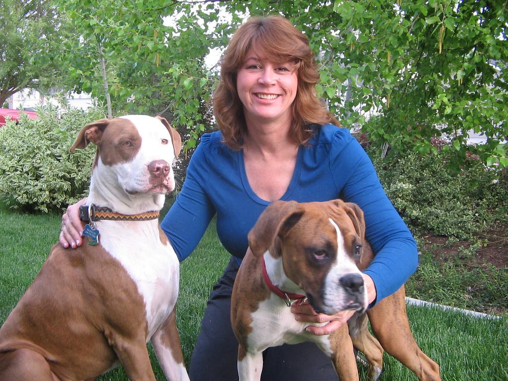 Boise pet adoption / Best florida keys resorts