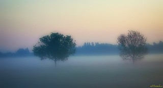 Morning has broken-2 | by Gerd Trynka