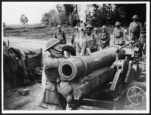 Triumphant dog sitting atop a gun surrounded by gunners, France, during World War I | by National Library of Scotland