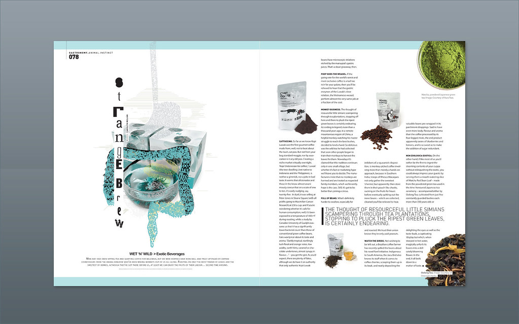 Modern design magazine strange brew magazine design for Designs magazine