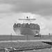 Rotterdam MÆRSK Container Vessel
