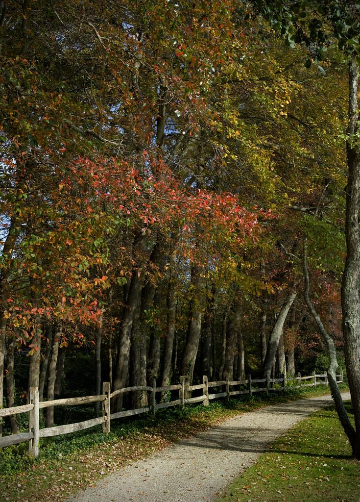 Long Island Arboretum Oakdale