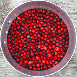 cranberry squircle | by Muffet