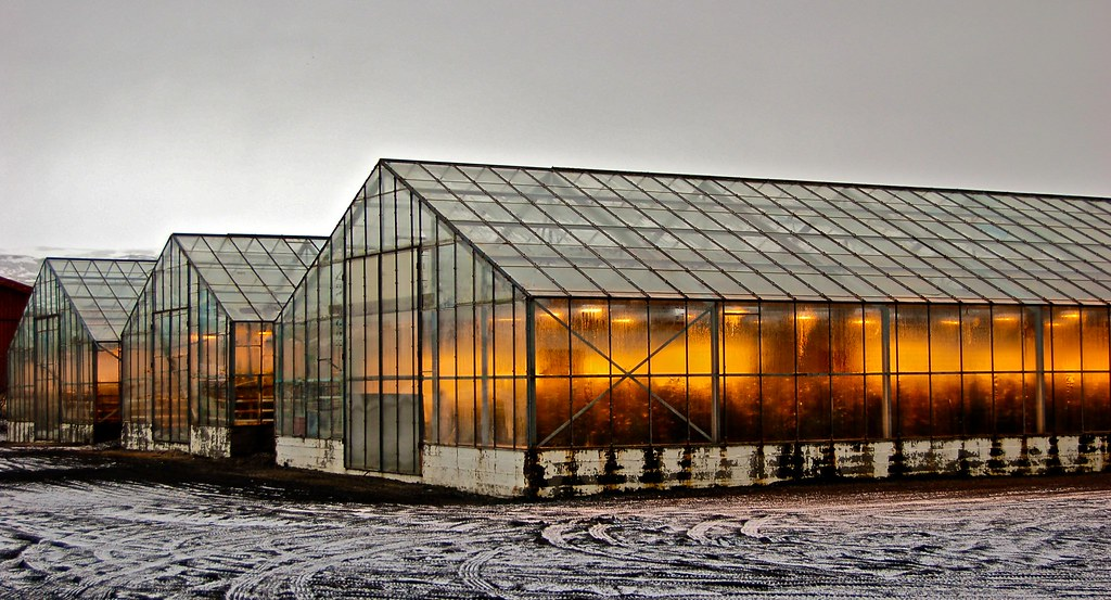 greenhouse in the snow pdf