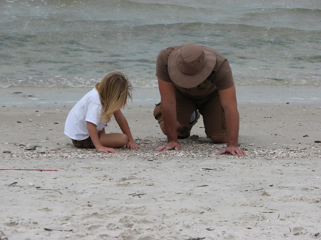 Shark Tooth Beach Jekyll Island Ga