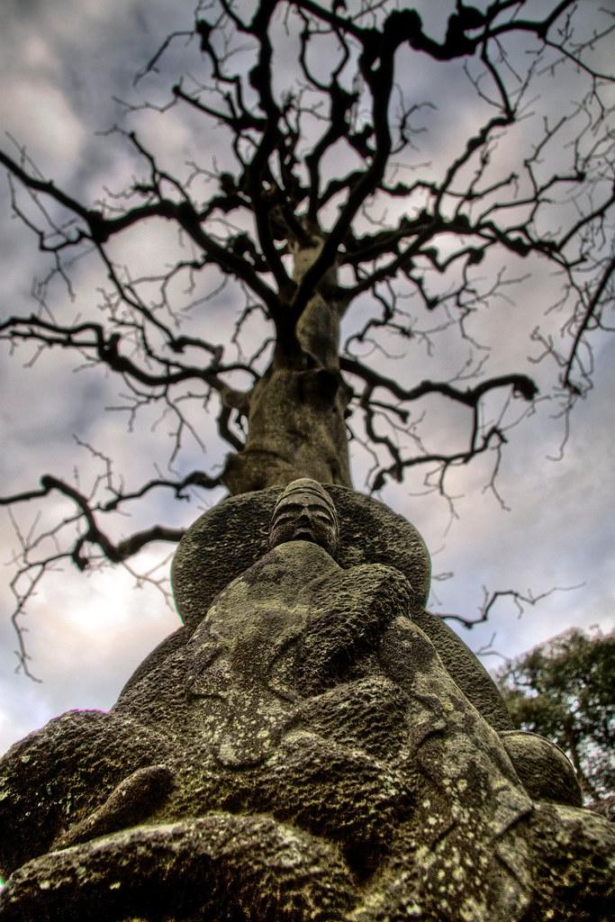 Buddha Root 〜釈迦尊の根〜