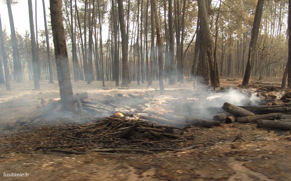 Pendant le déblai, on vérifie qu'il n'existe plus de risque d'incendie