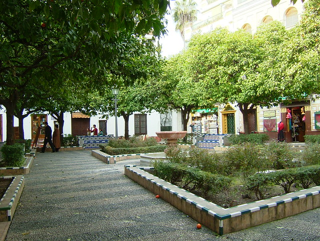 Plaza do a elvira flickr photo sharing - Garden center sevilla ...