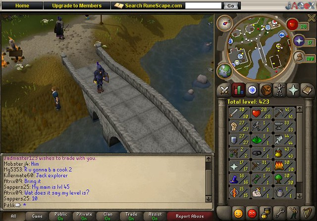 Image result for Runescape flickr