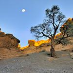 Namib Desert - Sesriem Canyon