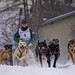Sled Dogs #8 - 2